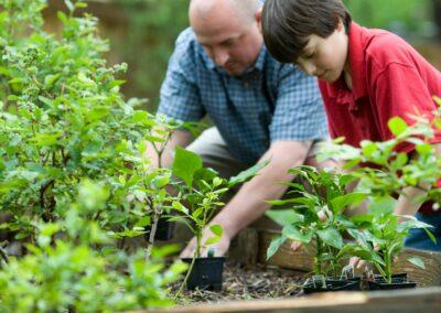 Energieoptimierung: Werkzeug für Gärtnereien