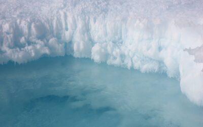 Klimafreundlich Kühlen